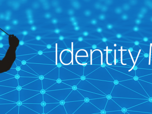 Identity Maestro 4.0.3 is now available!